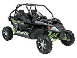 Arctic Cat - Wildcat